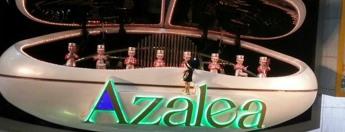Azalea is one of 横浜・川崎のモール、百貨店.