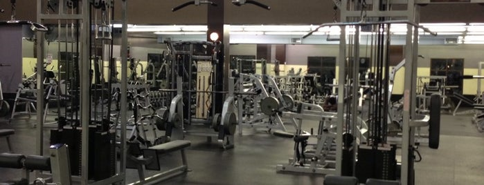Gold's Gym is one of micky's world.