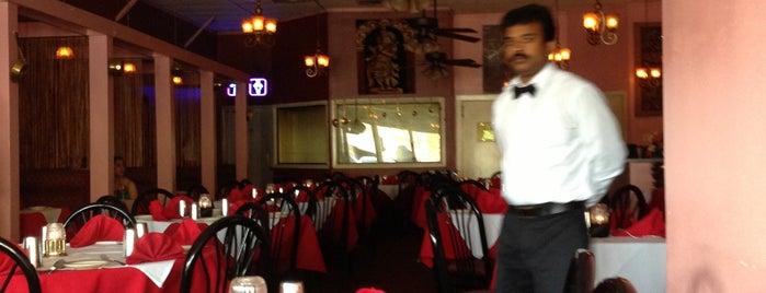 Shiva Indian Restaurant is one of Houston Favorites.