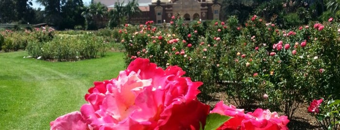 Exposition Park Rose Garden is one of 100 Cheap Date Ideas in LA.