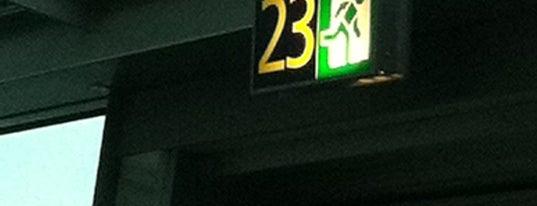 Gate 23 is one of Gaterun!.