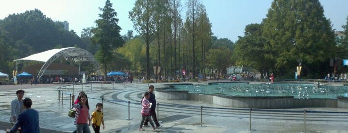 Children's Grand Park is one of Seoul #4sqCities.