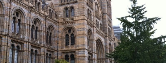 Natural History Museum is one of London Museums and Galleries.