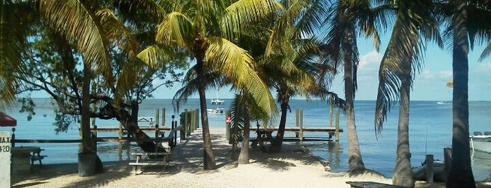 Caribbean Club is one of The Florida Keys.