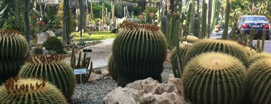 Orto Botanico is one of Where find City Map.