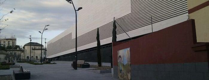 OCIO Y CULTURA en Alicante