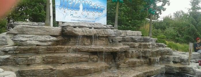 Wild Water Kingdom is one of Toronto Activities.