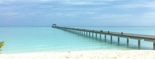 Main Bar, Holiday Island Resort is one of เที่ยวพักร้อนที่ Maldives.