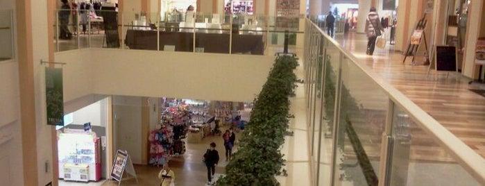 TRESSA YOKOHAMA is one of 横浜・川崎のモール、百貨店.