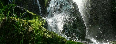 "Водопад ""Варовитец"" is one of Waterfalls."