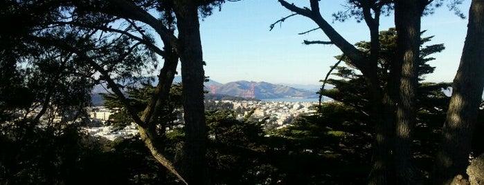 Buena Vista Park is one of San Francisco.