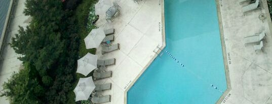 Sheraton Norfolk Waterside Hotel is one of Hotel / Casino.