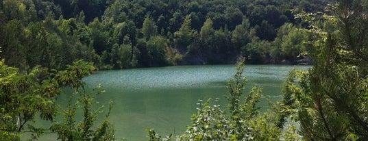 Steinbruch See is one of das schwimmwasser.
