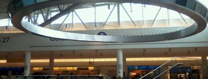 John F. Kennedy International Airport (JFK) is one of World Airports.