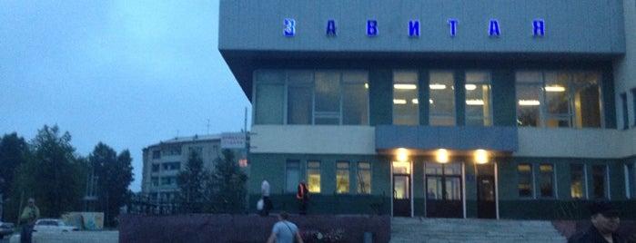 Ж/д станция Завитая is one of Транссибирская магистраль.