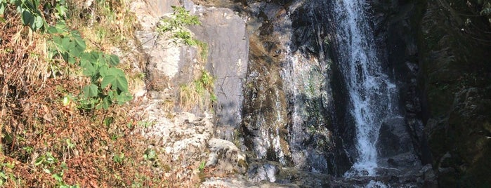 常清滝 is one of 日本の滝百選.