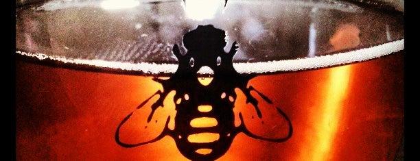 B. Nektar Meadery is one of Brewery Bucket List.