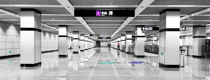 Damuqiao Rd. Metro Stn. is one of Metro Shanghai.