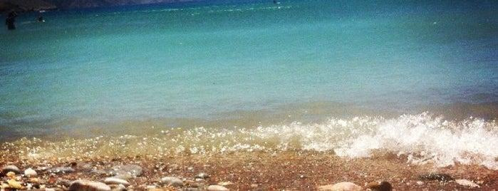 Delfini Beach is one of Paros Top.