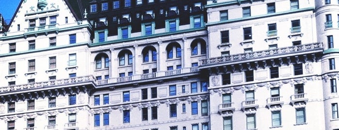 The Plaza Hotel is one of Architecture - Great architectural experiences NYC.