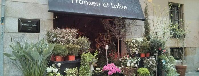Fransen et Lafite is one of Tiendas bonitas.
