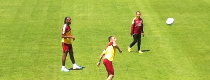 Galatasaray Metin Oktay Tesisleri is one of Gokay.