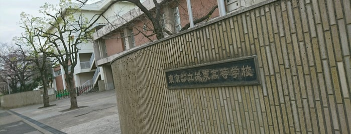 東京都立 城東高等学校 is one of 都立学校.