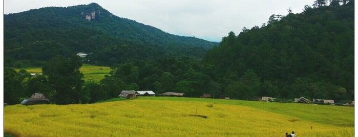 บ้านแม่กลางหลวง is one of Greater Chiang Mai.