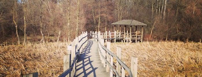 UW Arboretum is one of Madison Destinations.