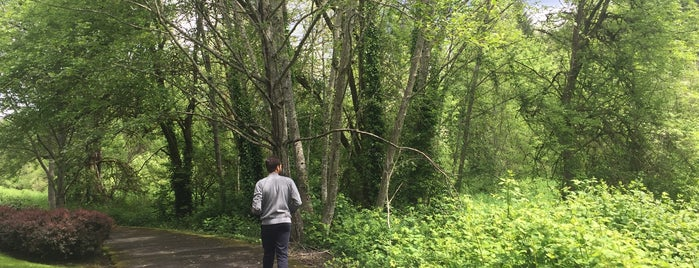 Fanno Creek Walking Trail is one of My Saved Places.