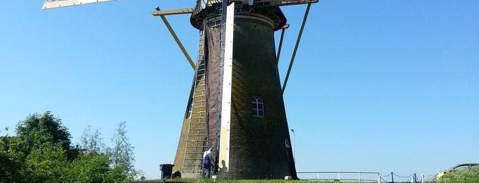 Korenmolen De Lelie is one of Molenroute Hoeksche-Waard.