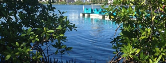 Laguna del Condado is one of The 15 Best Places for Sports in San Juan.