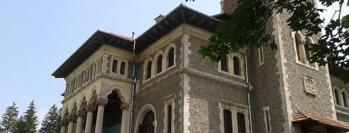 Castelul Cantacuzino is one of Romania.