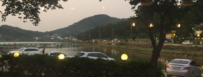 물왕저수지 is one of Favorite Great Outdoors.