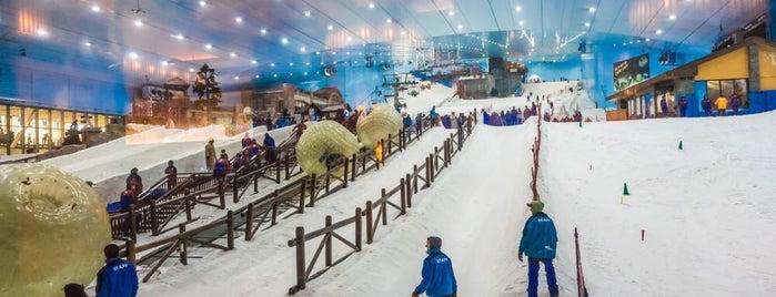 Ski Dubai is one of Crazy Places.