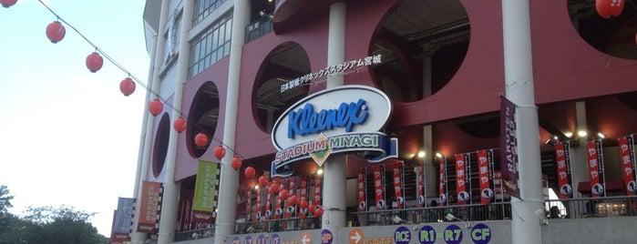 Rakuten Seimei Park Miyagi is one of Japan Baseball Studium.