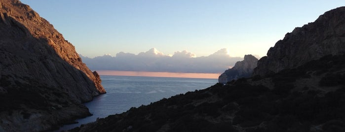 Vall de Bóquer is one of Mallorca Birdwatching/Ornithology.