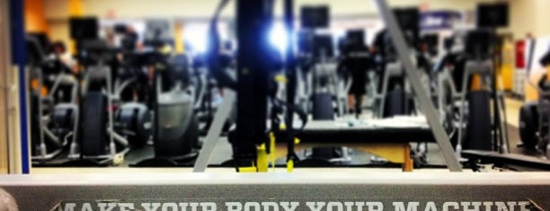 Top picks for Gyms or Fitness Centers