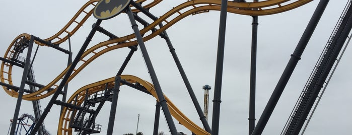 Batman: The Ride is one of Roller Coaster Mania.