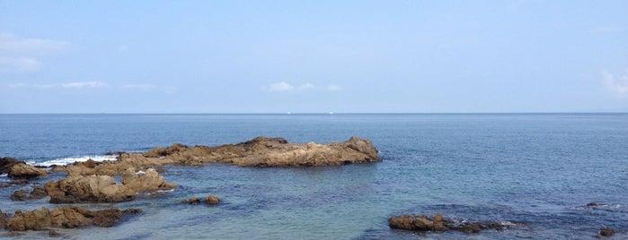 Lindo Mar Resort is one of Puerto Vallarta Hotels.