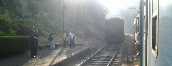 Kadigamuwa Railway Station is one of Railway Stations In Sri Lanka.
