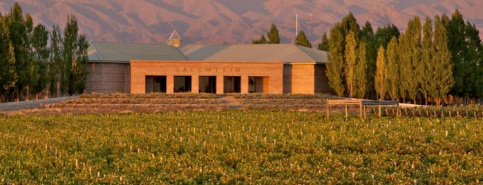 Bodegas Salentein is one of Experience Mendoza.