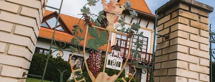 Garamvári Szőlőbirtok is one of Great places for Balaton themed Christmas gifts.