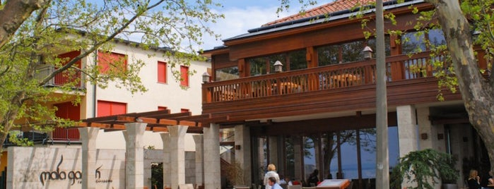 Mala Garden****Superior Hotel is one of Places to grab a bite around Balaton in the fall.