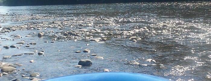 Delaware River Tubing is one of Kid Stuff.