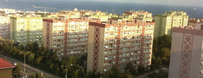 Tevd Sağlık Sitesi is one of gizemik gezerse (:.