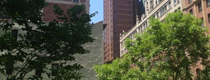 Tudor City Park North is one of NY to do - food.