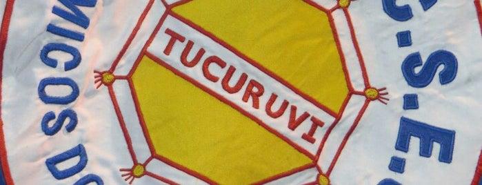 G.R.C.S.E.S. Acadêmicos do Tucuruvi is one of Escola de Samba.