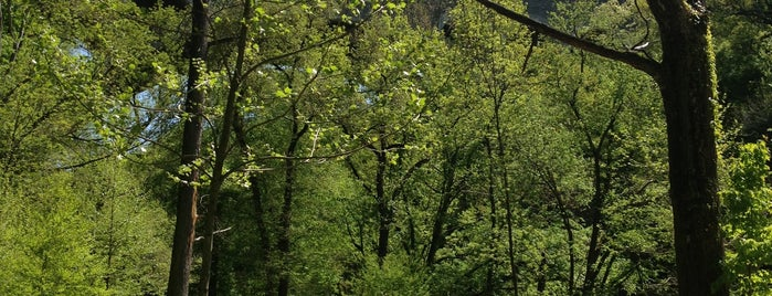 Wissahickon Bike Trail is one of places.