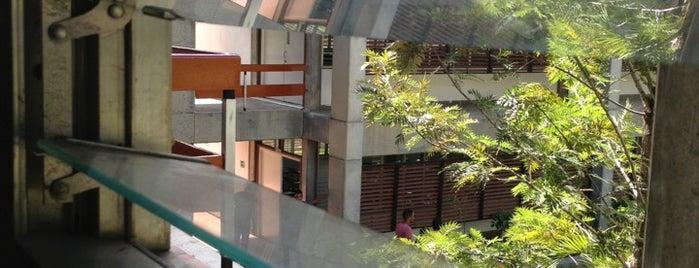 Edificio A-III is one of College.